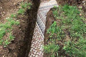 mosaico in valpolicella sotto il vigneto