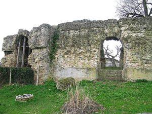 falerio picenus anfiteatro